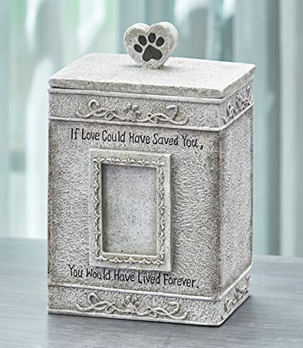 Faithful Angel Pet Memorial Urn with Photo Slot and Paw Print - Gray