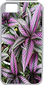 iPhone 5 Case iPhone 5S Case Cases Customized Gifts Cover purple Leaves Flowers - Ideal Gift