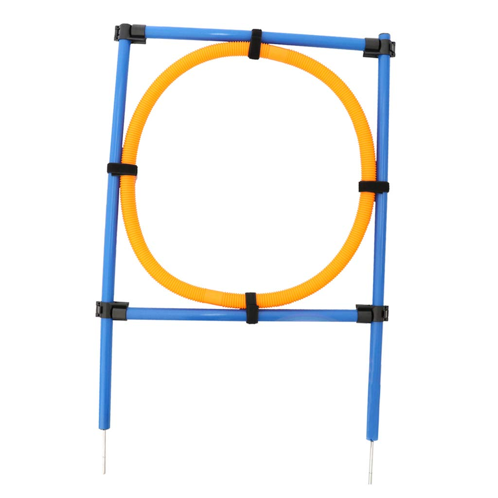 LOVIVER Dog Agility Equipment - Hoop Jump, Training Agility Jump Ring, Adjustable by LOVIVER