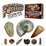 Ultimate Fossil Kit - Set of 15 Real Fossils - Includes Rare Specimens!