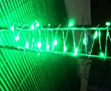 SUPERNIGHT (TM) Green Copper LED Lights Strings Christmas Party String AA Battery Powered Ultra Thin String Wire Portable Decorative LED Strings 7ft/2m 20 LEDs
