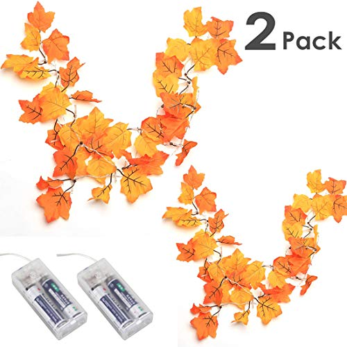 Decorate Work Cubicle For Halloween (Thanksgiving Decorations Lighted Fall Garland, Thanksgiving Decor Halloween String Lights 8.2 Feet 20 LED (2)