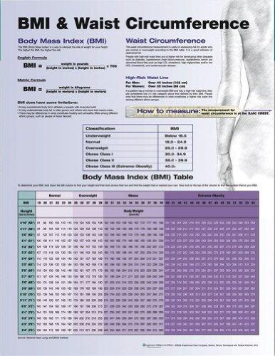 Body Mass Index Formula - 8