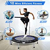"""BCAN 48"""""""" Foldable Mini Trampoline for Adults Max"""