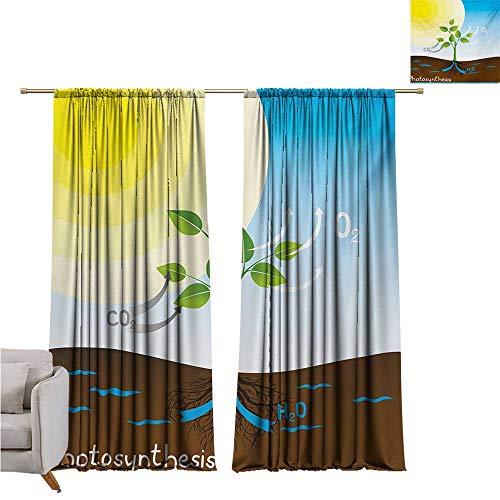 DESPKON-HOME Window Darkening Curtains,Educational Simple Photosynthesis Scheme Plant Sun Molecules Chemical Chain Growth Ecology Room Darkening Curtains (63W x 63L inch,Multicolor)