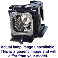 Diamond Dual Lamp ET-LAD60W / ET-LAD60AW for PANASONIC Projector with a Ushio bulb inside housing