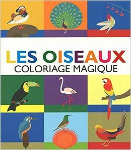 Coloriage Magique Oiseau.Oiseaux Coloriage Magique Les 9782354813321 Amazon Com Books