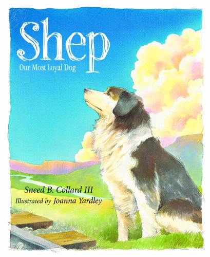 Shep: Our Most Loyal Dog (True Stories) by [Collard, Sneed B.]