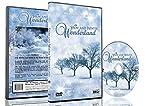Christmas DVD - Falling Snow & Winter Wonderland with Beautiful Winter Scenery and Snowfalls