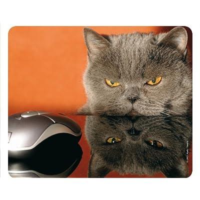 «chat» et souris (motif gRUMPY cAT 51–chats : colibri tapis de souris/tapis de souris tapis de souris en caoutchouc motif hibou très résistant à la déchirure fond adhérent