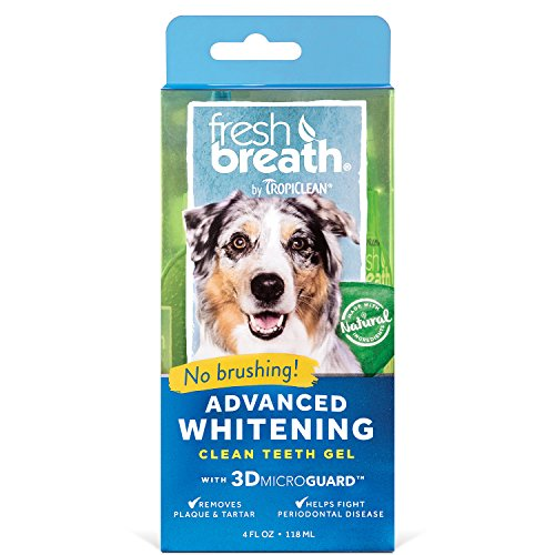 Fresh Breath by TropiClean No Brushing Oral Care Gel for Dogs With Advanced Whitening Formula, 4oz, Made in the USA - Helps Remove Plaque and Tartar and Freshens Breath