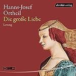 Die große Liebe   Hanns-Josef Ortheil