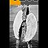 Agares: O anjo sem asas
