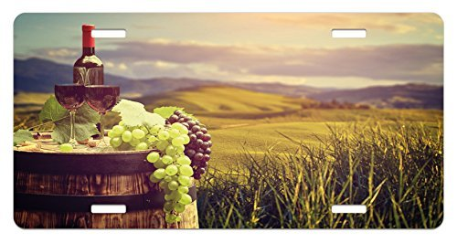 zaeshe3536658 Wine License Plate, Italy Tuscany Landscape Rural Vineyard Autumn Harvest Grapes Drink Viticulture, High Gloss Aluminum Novelty Plate, 6 X 12 Inches.