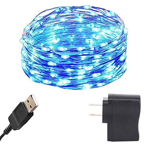 HAHOME 33Ft 100 LEDs USB Starry String Lights with Power Adapter for Wedding Christmas Party Decoration,Blue