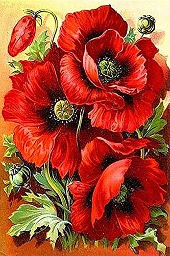 DIY 5D Diamond Painting by Number Kits, Benbo 11.8x15.8In Full Drill Red Flower Rhinestone Embroidery Cross Stitch Arts Craft Canvas Wall Decor ()