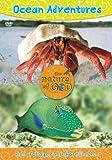 Ocean Adventures, Volume 2: Fins, Foliage, and Shoreline Fun