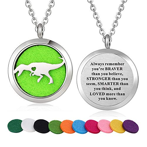 WPFdesign Stainless Steel Tyrannosaurus Rex Dinosaur Animal Aroma Therapy Aromatherapy Essential Oil Diffuser Locket Necklace Pendant (Style 27)