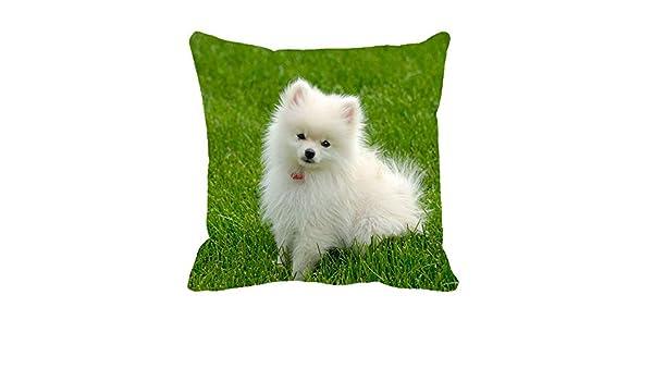 Amazon.com: Naierkeji Cute Puppy Pillow Case 18 in: Home ...