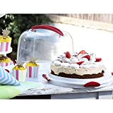 ''Clear Cake Carrier with Tight Clasping Latches, Accommodates two 9'''' round cakes, 24 cupcakes and 20 cake pops '' (4)