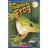 From Tadpole to Frog (Scholastic Reader, Level 1)