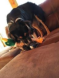 Mallard Squeaky Dog Chew Toys Tough Plush Stuffed Green Duck Toy 18\