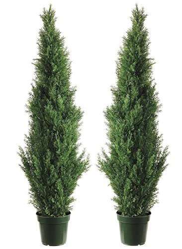 Two 4 Foot Outdoor Artificial Cedar Topiary Trees Uv Rated Potted Plants by Silk Tree Warehouse