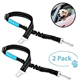 Dog Seat Belt, Pet Dog Cat Car Seat Belt Safety - Adjustable Safety Belt Pet Leash - Heavy Duty Nylon - Universal Fit (2 Pack Elastic Leash)