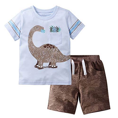 Little Bitty Boy's Summer Clothes Toddler Short Sets Cotton Outfits T-Shirt&Shorts Dinosaur 4-5Y/4T