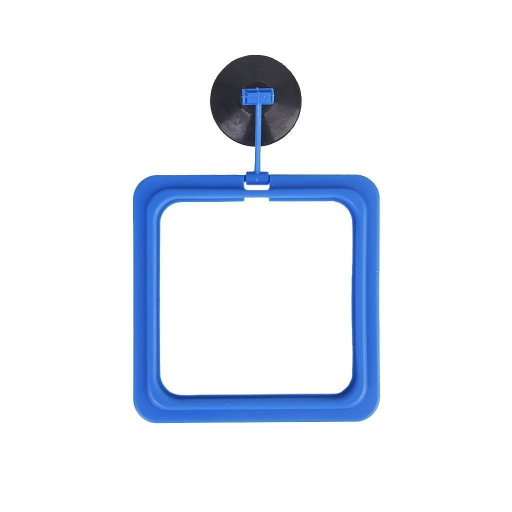 BARGAIN HOUSE Circle Feeding Tool Feeding Ring Floating Food Circle Suction Food Feeder suitable for feeding flake foods and other floating foods Square shape