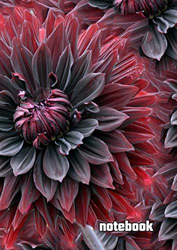 notebook: a4 cute dot grid journal | fractals pattern design creative flower blossom