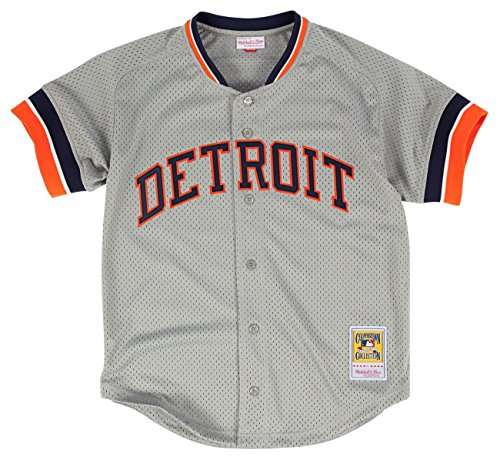 Mitchell & Ness Kirk Gibson Grey Detroit Tigers Authentic Mesh Batting Practice Jersey Medium (40)