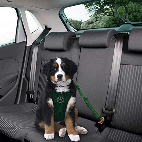 Buy car harness for large dogs
