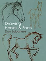 Drawing Horses And Foals (English