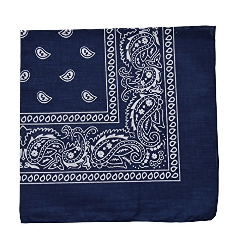 (Raylarnia Novelty Bandanas Paisley Cotton Bandanas-Navy Blue)