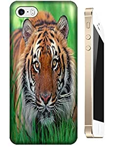 MMZ DIY PHONE CASETiger Case Cover Hard Back Cases Beautiful Nice Cute Animal hot selling cell phone cases for Apple Accessories ipod touch 5 # 11