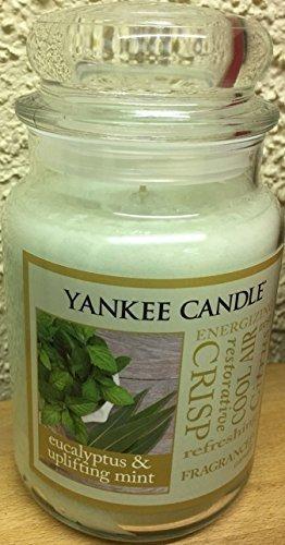 Yankee Candle EUCALYPTUS & UPLIFTING MINT Large 22 oz Candle