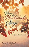 Where the Meadowlark Sings, Betty L. De Witt, 1490830952