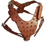 Spiked Leather Dog Harness Large Brown 26″-34″ Chest, 28 Spikes Pit Bull, Boxer, Bull Terrier, My Pet Supplies