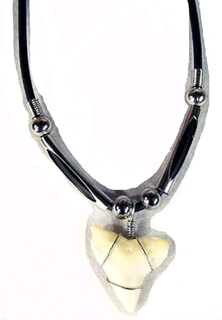 Novelties Company Tiger Shark Tooth Pendant on Black Rope Necklace
