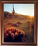 Impact Posters Gallery Desert Sunset Framed Wall Decoration Southwest Cactus Field Scenic Mahogany Picture Art Print (18x22)