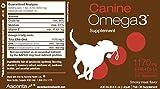 Ascenta Canine Epa & Dha Omega 3 Fish Oil Liquid, 200 ML