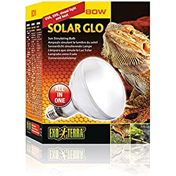 Amazon Com 4 Pack Exo Terra Solar Glo High Intensity