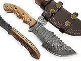 Beautiful Olive Wood Handmade Damascus Steel Tracker Hunting Knife Prime Quality