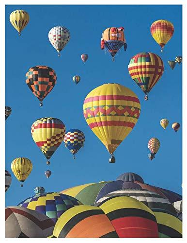 Hot Air Balloon Fiesta Albuquerque - Hot air balloon flight - oversized 8.5x11