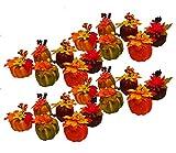 Black Duck Brand Set of 24 Artificial Decorative Harvest 4'' Pumpkins/Gourds Fall Halloween Decorations (Set of 24)