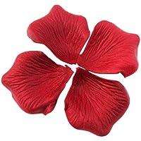 Hangqiao- Pétalos de Rosa, Color, 14 Pulgadas (Snner