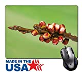 """MSD Natural Rubber Mouse Pad/Mat with Stitched Edges 9.8"""" x 7.9"""" Spring bud Image ID 27019613"""