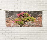 Anniutwo Brick Wall,Travel Towel,Fresh Little Tree Fuchsia Flowers in Front Cracked Wall Hope Dream Theme,100% Microfiber,Multicolor Size: W 12'' x L 27.5''