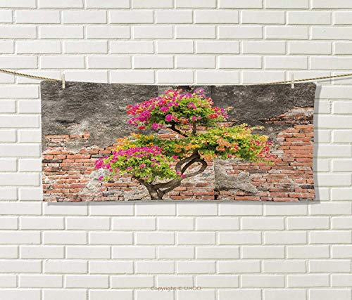 Anniutwo Brick Wall,Travel Towel,Fresh Little Tree Fuchsia Flowers in Front Cracked Wall Hope Dream Theme,100% Microfiber,Multicolor Size: W 12'' x L 27.5'' by Anniutwo
